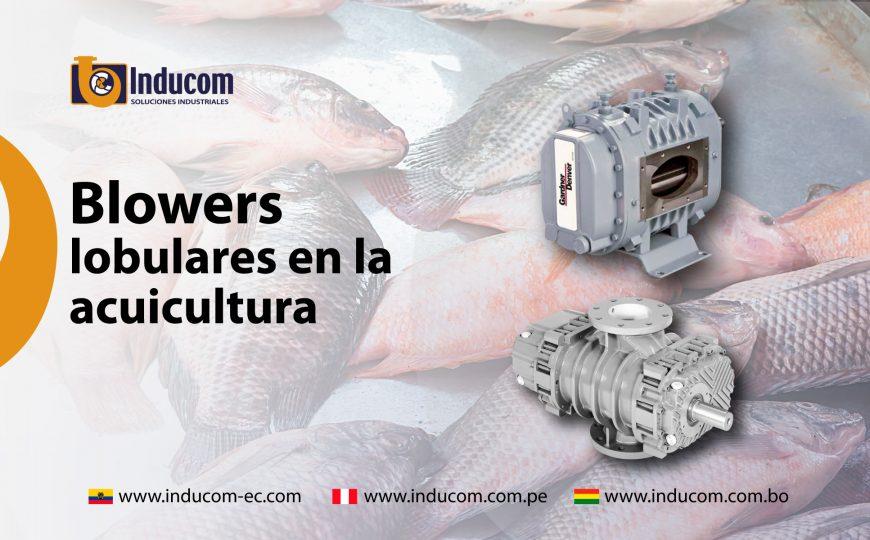 blowers (5)